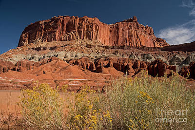 Photograph - The Castle In Capital Reef by Cindy Murphy - NightVisions