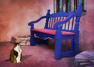 The Cat And The Bench Art Print
