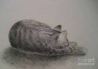 The Cat Series II Art Print by Sabina Haas