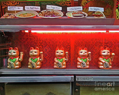Photograph - The Lucky Cats by Joseph J Stevens