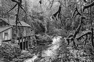 The Cedar Creek Mill Moss Art Print