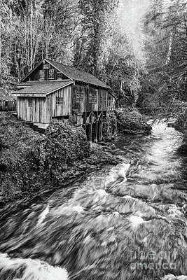 Grist Mill Photograph - The Cedar Mill And Creek by Jamie Pham