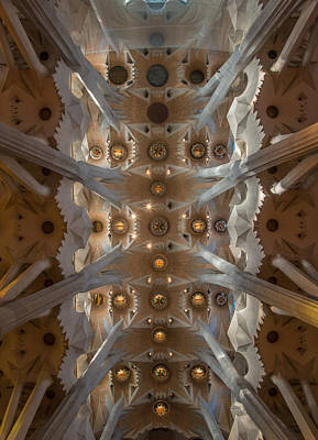 Photograph - The Ceiling by Gary Lengyel