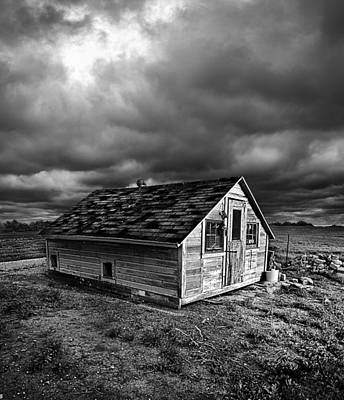 The Cell Print by Phil Koch