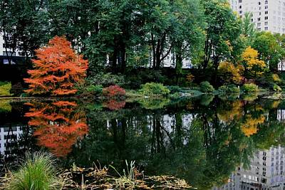 Photograph - The Central Park Pond  by Christopher Kirby