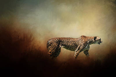 Photograph - The Cheetah by David and Carol Kelly