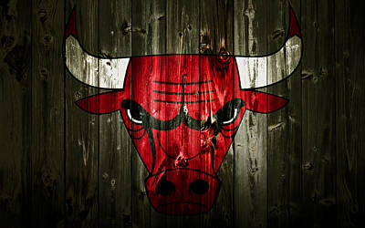 The Nature Center Mixed Media - The Chicago Bulls 2c by Brian Reaves