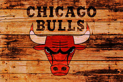 The Nature Center Mixed Media - The Chicago Bulls 2w by Brian Reaves