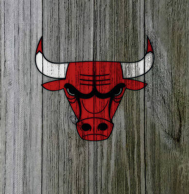 The Nature Center Mixed Media - The Chicago Bulls C1                            by Brian Reaves