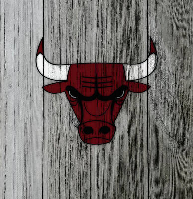 The Nature Center Mixed Media - The Chicago Bulls C2                            by Brian Reaves