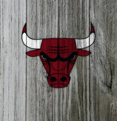 The Nature Center Mixed Media - The Chicago Bulls C3                            by Brian Reaves