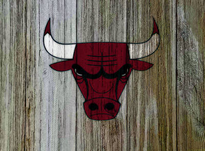 The Nature Center Mixed Media - The Chicago Bulls C5                            by Brian Reaves