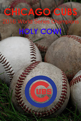 Baseball Photograph - The Chicago Cubs - Holy Cow by David Patterson