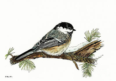 Painting - The Chickadee by Shari Nees