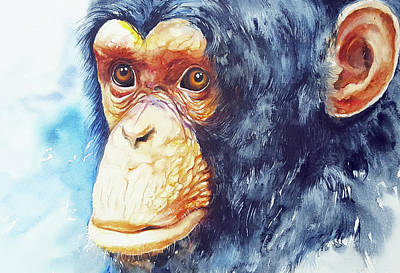 Chimpanzee Painting - The Chimp_ Jojo by Arti Chauhan