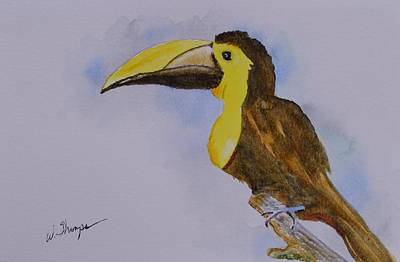 Painting - The Choco Toucan  by Warren Thompson