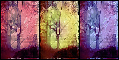 Photograph - The Choices Of Trees by Tara Turner