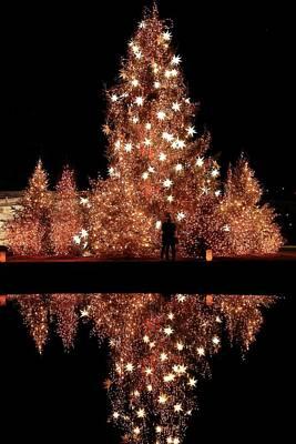 Photograph - The Christmas Kiss by Carol Montoya