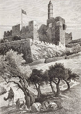 Camel Drawing - The Citadel Of Jerusalem Seen From The by Vintage Design Pics