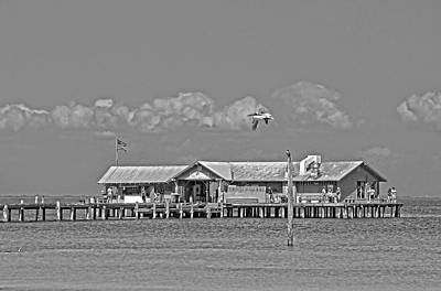 Photograph - The City Pier - A Local Landmark Bw   by HH Photography of Florida