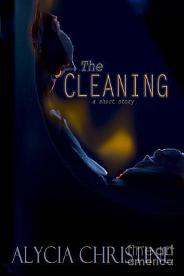 Photograph - The Cleaning  by Alycia Christine