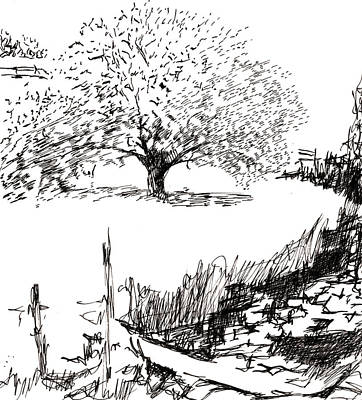 Robbi Musser Drawing - The Clearing by Robbi  Musser
