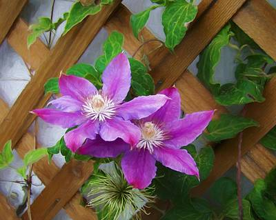 Digital Art - The Clematis Flowers by Ernie Echols