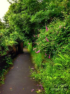 Photograph - The Cliff Path At Lynton 3 by Joan-Violet Stretch