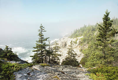 Photograph - The Cliffs Of Isle Au Haut by Gordon Ripley