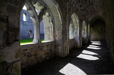 The Cloisters In Killmallock 12th Art Print by Panoramic Images