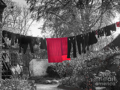 Photograph - The Clothes Line by Robin Zygelman