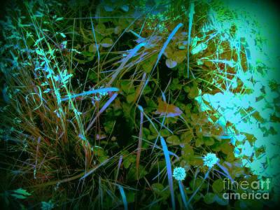 Digital Art - The Clover Patch 2 by Nancy Kane Chapman