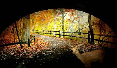 Photograph - Under The Cobble Stone Bridge by Diana Angstadt