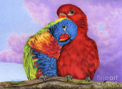 Parakeet Drawing - The Color Of Love by Sarah Batalka