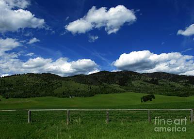 Photograph - Blue Sky Kind Of Day by Janice Westerberg