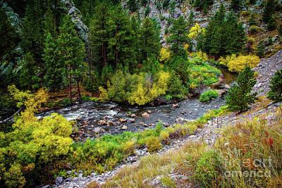 Photograph - The Colorado Advantage by Jon Burch Photography