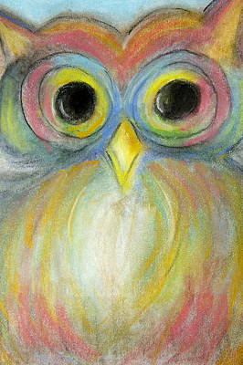 Photograph - The Colorful Owl by Danielle Allard