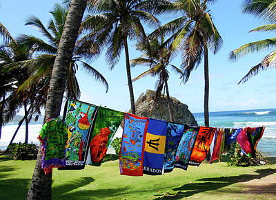 Photograph - The Colors Of Barbados by Kurt Van Wagner