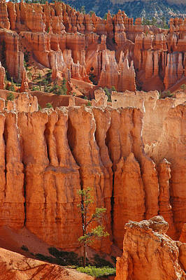 The Colors Of Bryce Canyon Art Print
