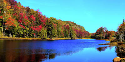 Photograph - The Colors Of Fall by David Patterson