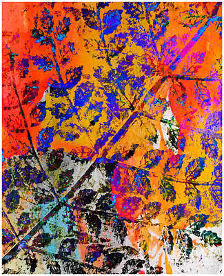 Photograph - The Colors Of Leaves by Judi Bagwell