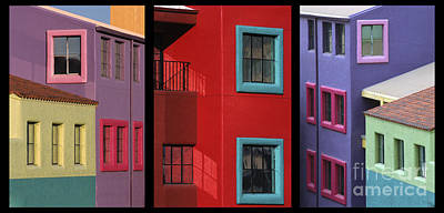 Photograph - The Colors Of Tucson II by Sandra Bronstein