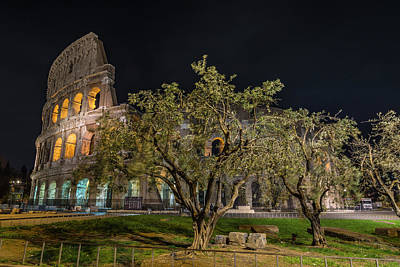 Photograph - The Colosseum by Gary Lengyel