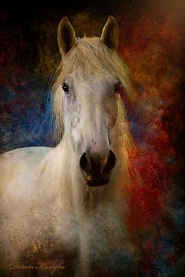 Draft Horses Photograph - The Colours Of Love. by Dorota Kudyba