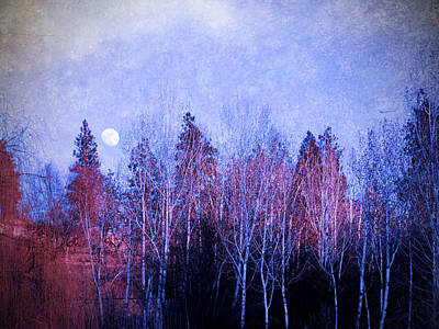 Photograph - The Colours Of The Moon by Tara Turner