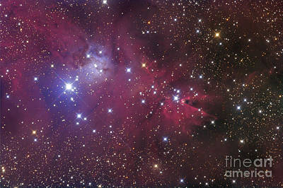The Cone Nebula Art Print