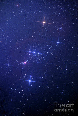 Photograph - The Constellation Orion by John R Foster