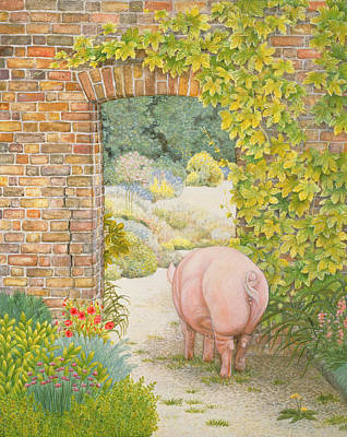Sow Painting - The Convent Garden Pig by Ditz