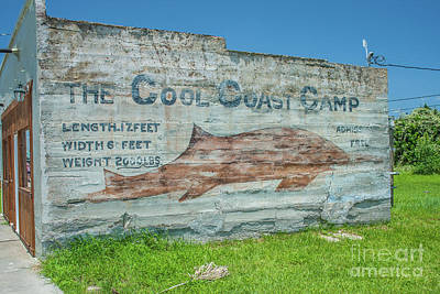 Photograph - The Cool Coast Camp by Tony Baca