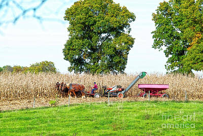 Photograph - The Corn Picker October 2016 by David Arment
